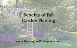 Benefits of Fall Garden Planting