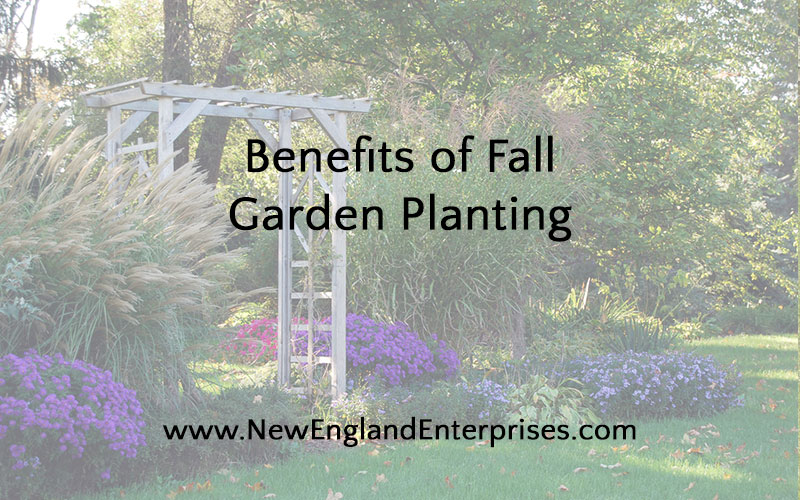 Benefits of Fall Garden Planting