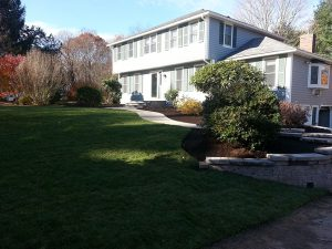 After walkway landscape design