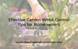 Effective Garden Weed Control Tips for Homeowners