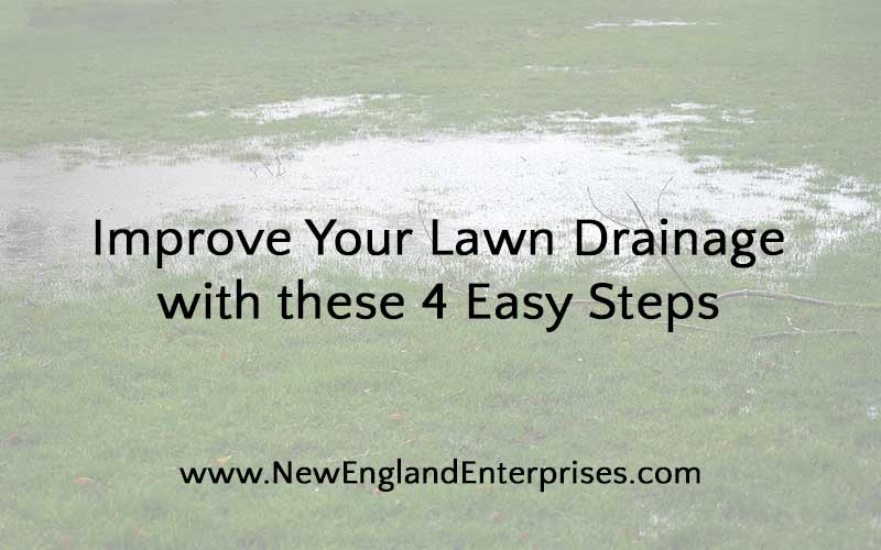 Improve Your Lawn Drainage with these 4 Easy Steps