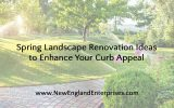 Spring Landscape Renovation Ideas to Enhance Your Curb Appeal