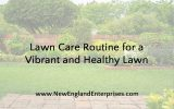 Lawn Care Routine for a Vibrant and Healthy Lawn
