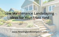 Low Maintenance Landscaping Ideas for Your Front Yard
