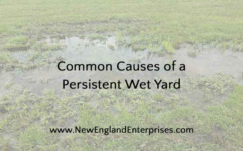 Property with persistent wet yard