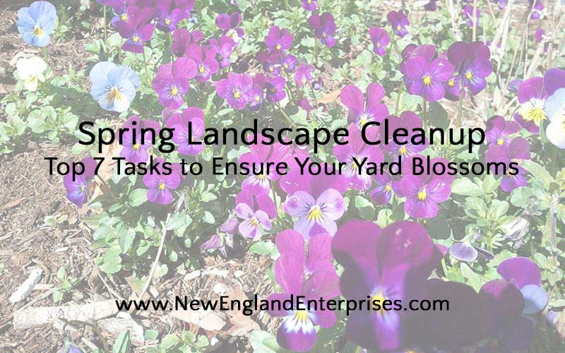 Spring Landscape Tips