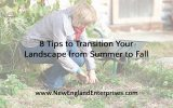 8 Tips to Transition Your Landscape from Summer to Fall