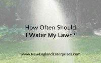 How Often Should I Water My Lawn - New England Enterprises