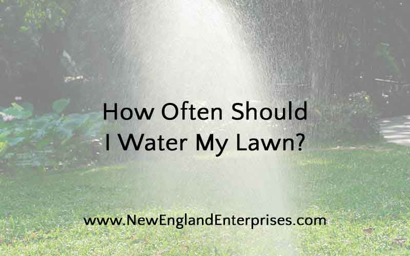 How Often Should I Water My Lawn New England Enterprise